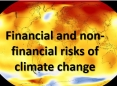Financial and Non-financial Risks of Climate Change